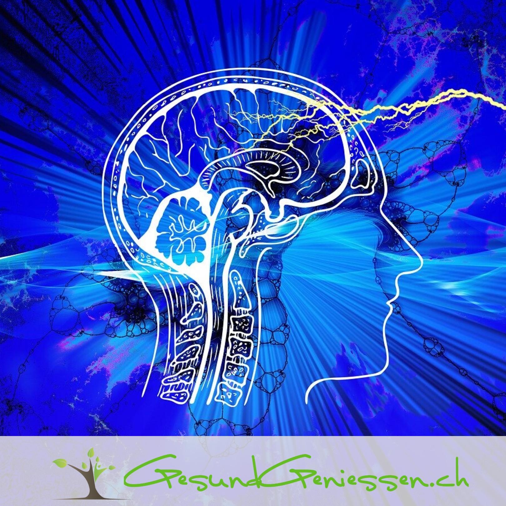 Wie deine Gedanken deine Zellen steuern